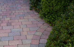 FLOWER POWER: Incorporating raised beds or green borders can help your driveway to look more natural.